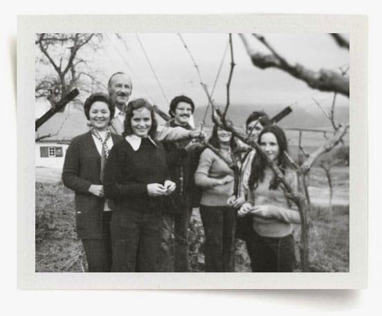 Van Velden: A Legacy of Pioneers - Overgraauw Wine Estate